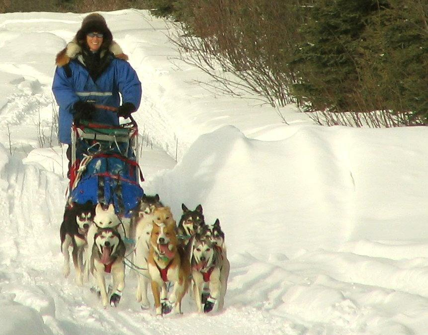 "16dogsled- Debbie Clarke Moderow, author of a book called ""Fast into the Night"" cruising with the team."